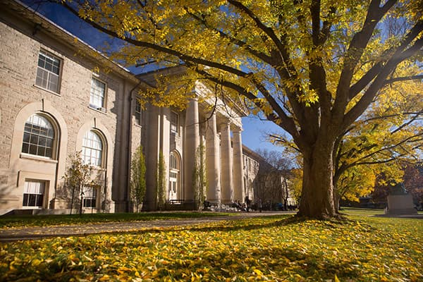Image of Goldwin Smith Hall, a large tree to the right, leaves on grass, on a sunny fall day